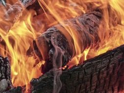 Flames of fire on wooden logs