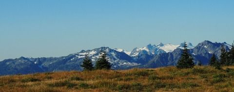 Landscape Picture of olympic national park in washington