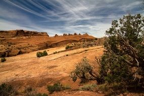 Landscape with beautiful Arches National Park