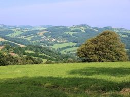 farmland landscape, fields and meadows on hills at summer