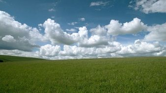 landscape of cloudly sky over the grass field