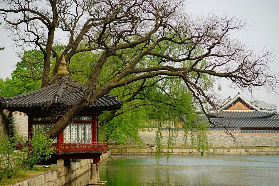 Beautiful, traditional Gyeongbok Palace with trees on the shore in South Korea