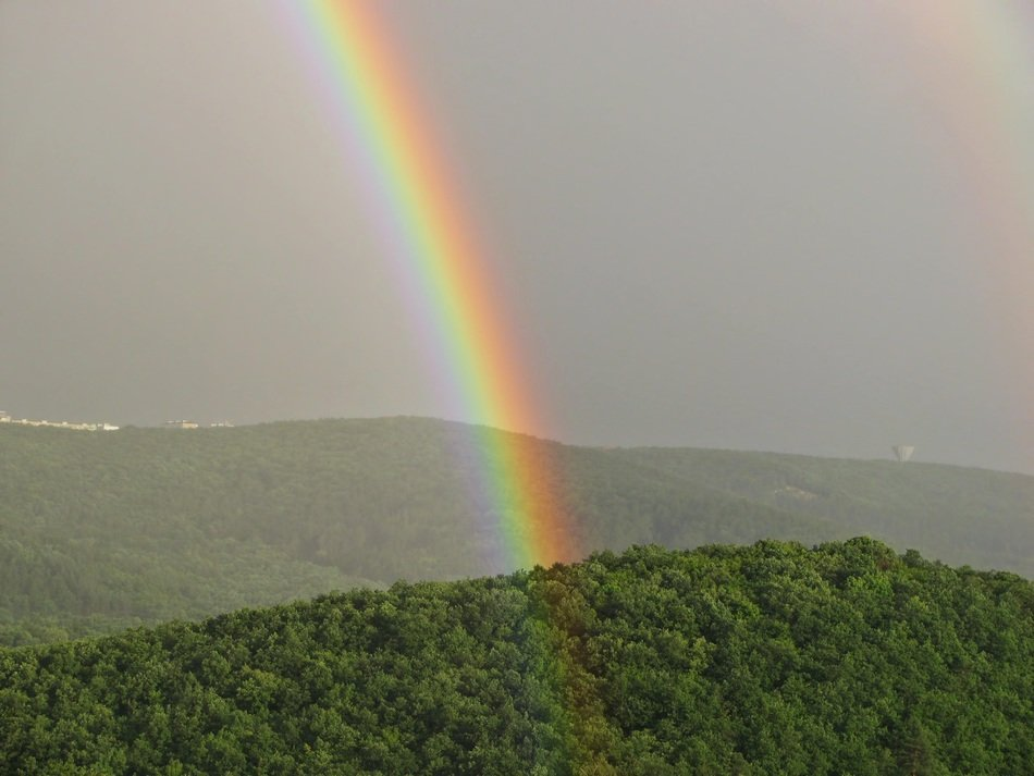 rainbow over green trees on the mountain