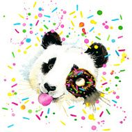 Funny Panda Bear with watercolor splash textured background N2