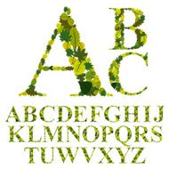 Font made with leaves floral alphabet letters set