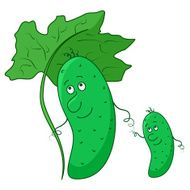 Cucumber parent and baby