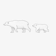Polar bear mom and her cub are walking