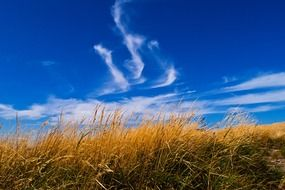 blue sky with clouds over the meadow