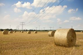 round straw bales on a field