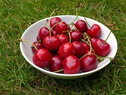 red cherries in the plate