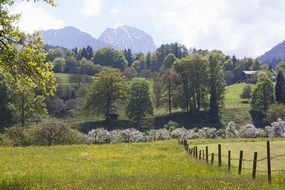 Pasture fence along the beautiful and colorful fields in Wendelstein, Germany