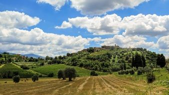 panorama of the countryside in tuscany