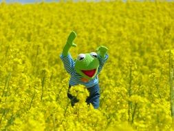 Figurine of the frog among the rapeseed field