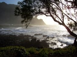 beautiful coast at sunset, spain, canary islands, tenerife