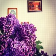 bouquet of purple lilacs in the room