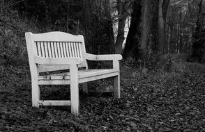 Black and white photo of the bench