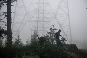 electrical supports in dense fog