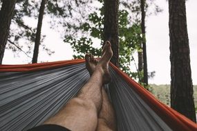 man on a hammock in a forest
