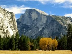 wonderful half dome