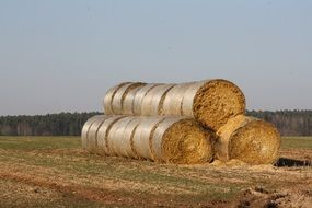 wonderful straw bales