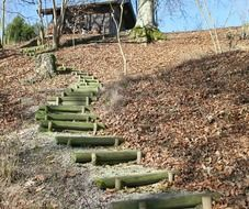 Wooden ladders on a hill