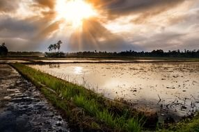 scenic nature of Indonesia at sunset