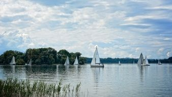 sailing boat in the lake