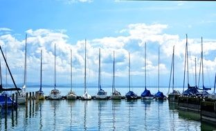 sailing boats in the port
