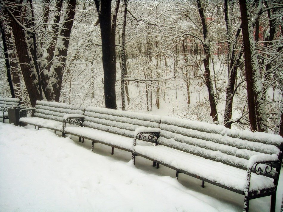 Benches in the snowy park