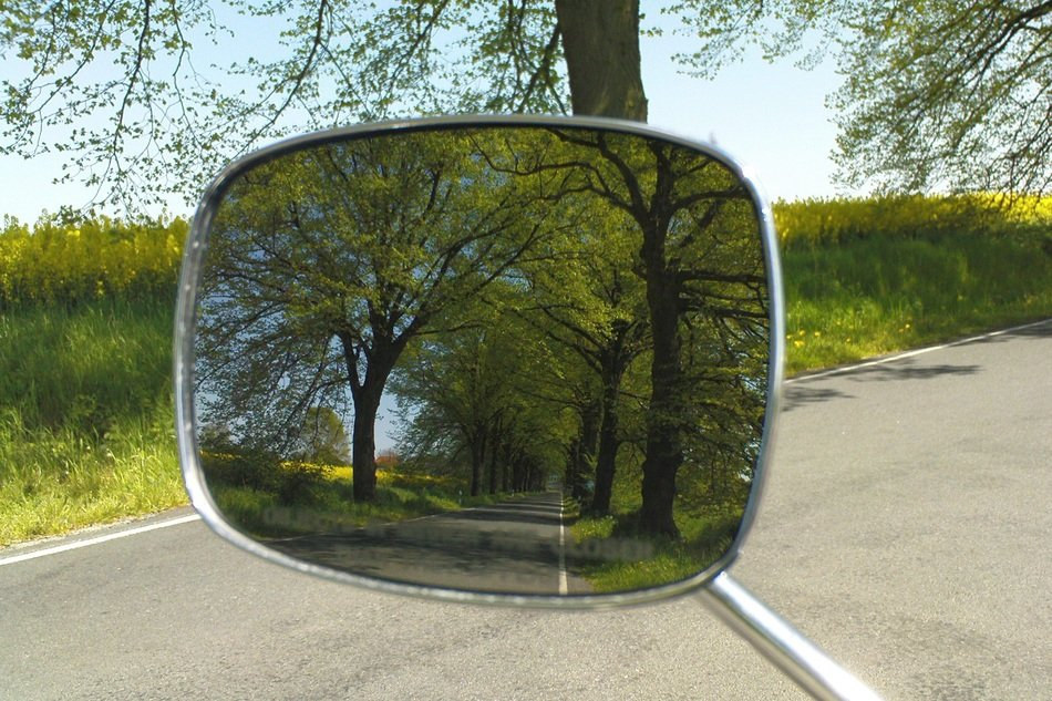 trees are reflected in the rearview mirror