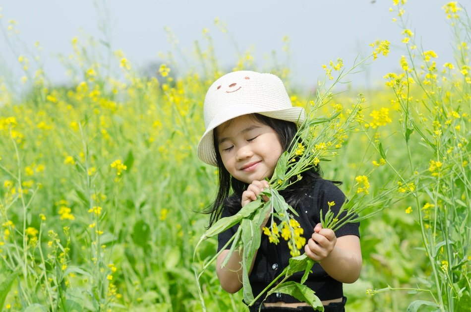 Little girl among the field with yellow flowers