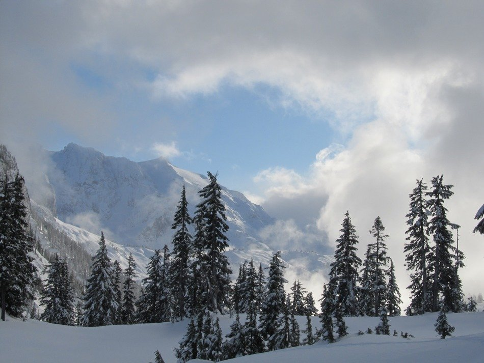 Mountain with green spruces in the winter, mt baker
