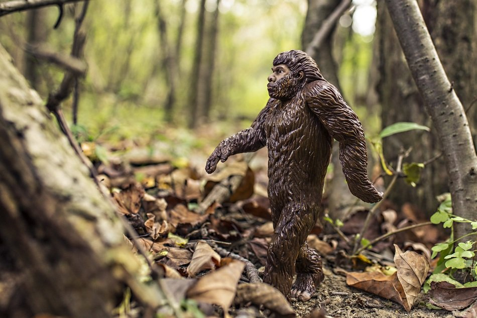 funny brown anthropoid ape toy figurine on forest leaves