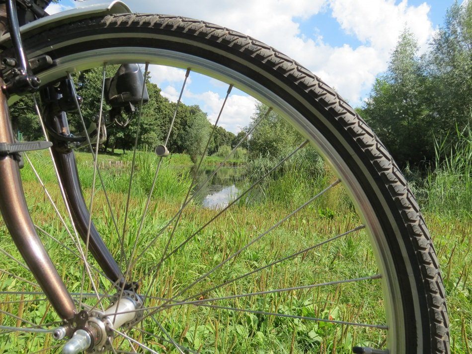 green meadow through the wheel of a bicycle