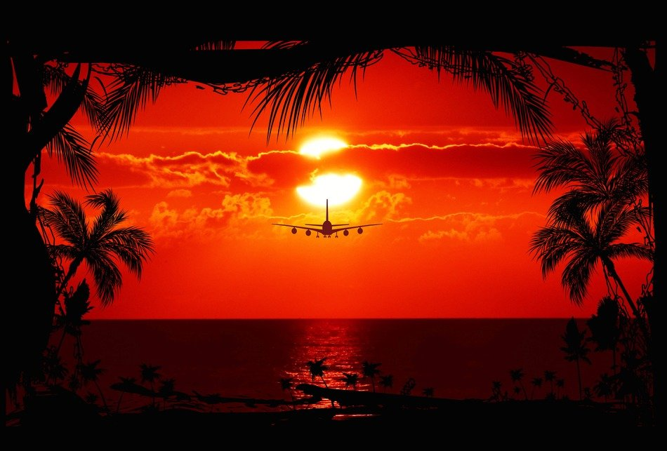 plane over the sea sun sunset view