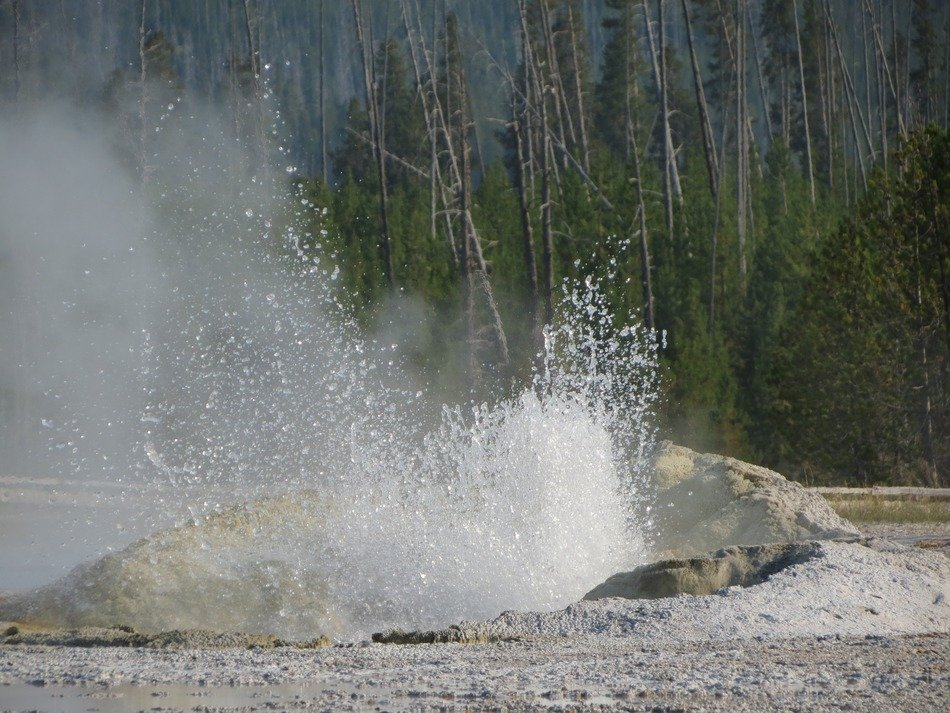 amazing geyser in a national park
