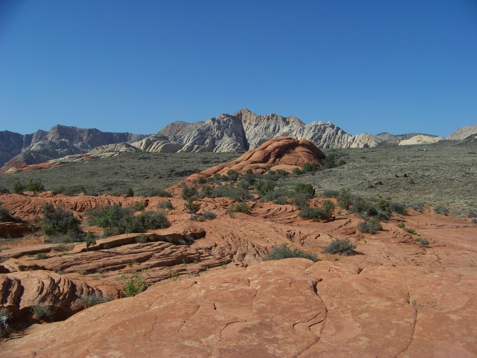 scenic desert landscape on the background of the rocky nature of the Snow Canyon, Utah