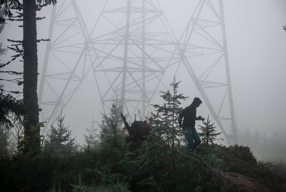 Person electrical supports among the plants in dense fog in Alsace, France