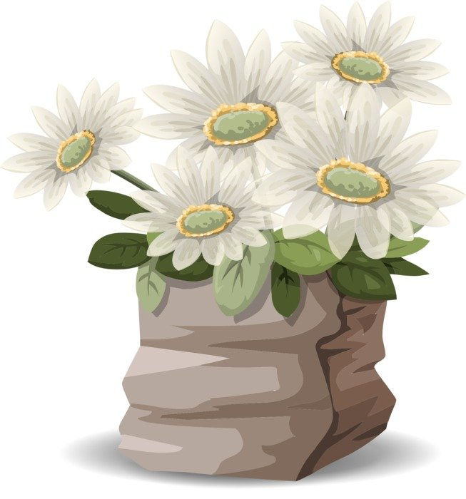 clipart, picture of nice white flowers