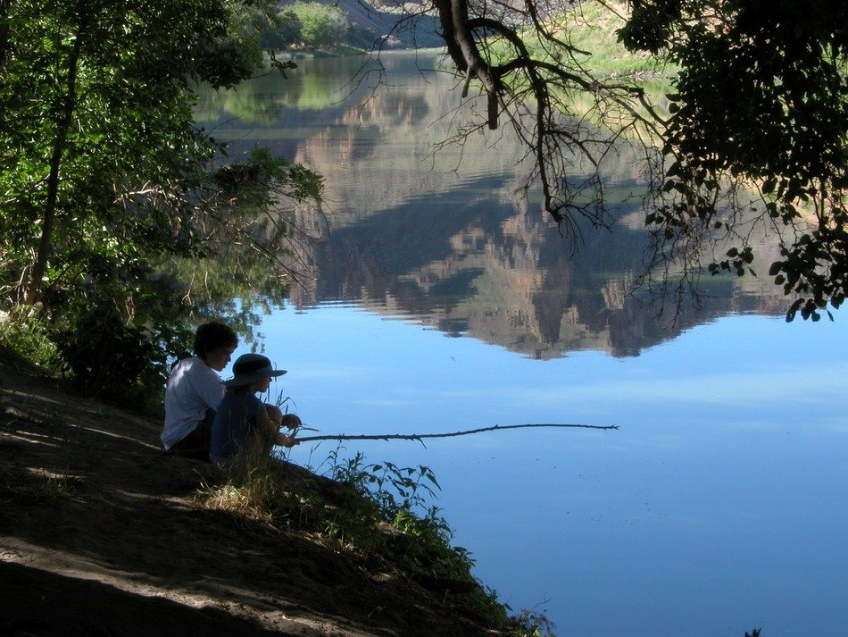 children go fishing in the lake in summer
