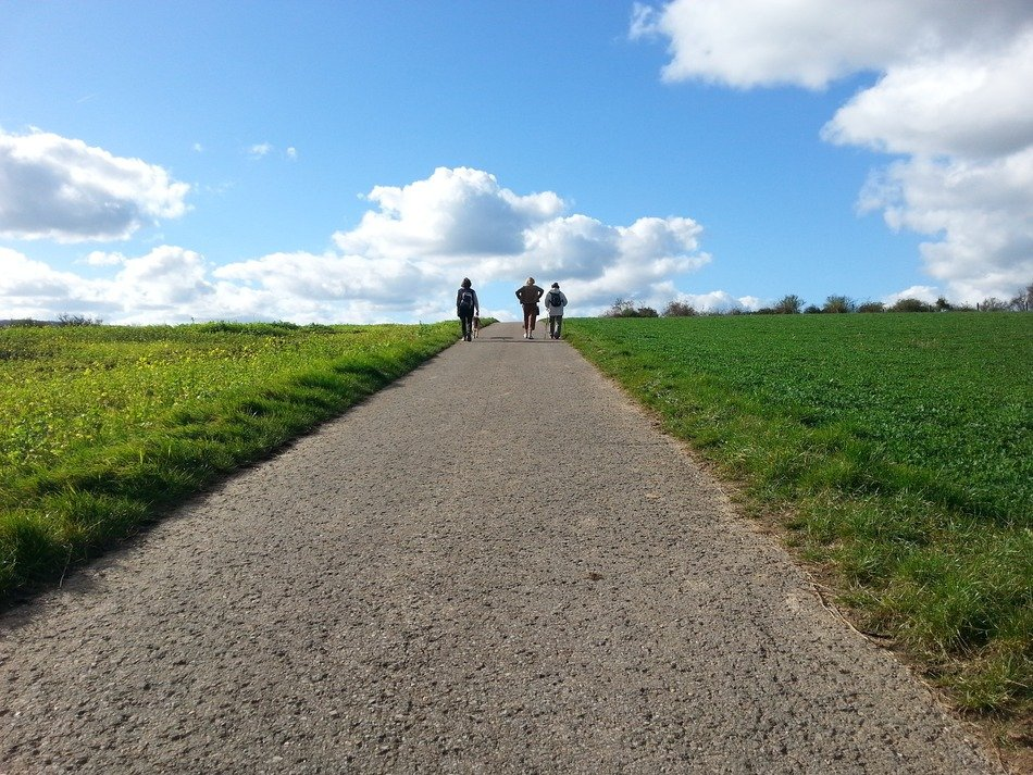 people walking by road through green field