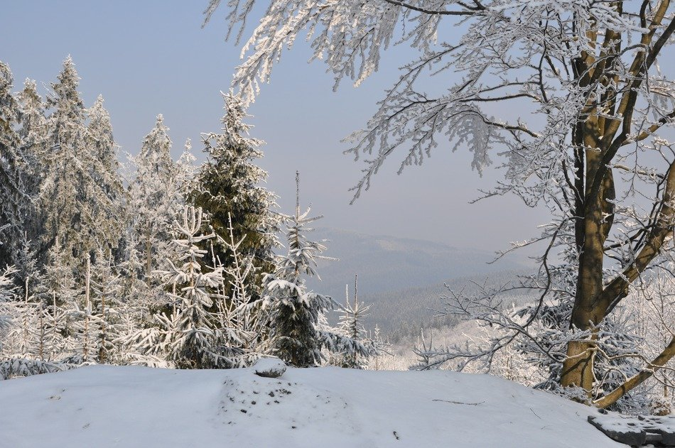 snowy winter in the mountains of the Czech Republic