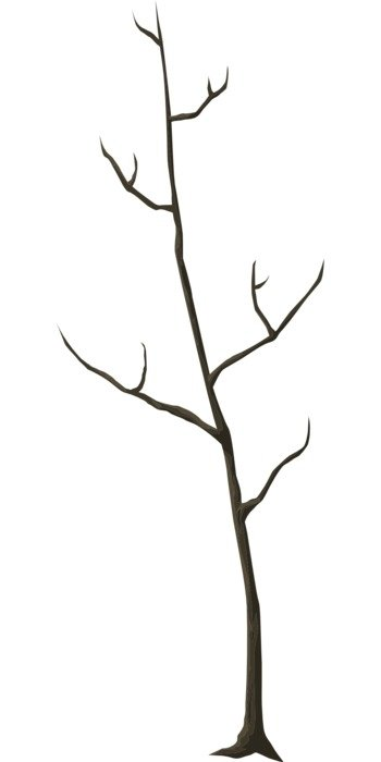 drawing of a dead tree