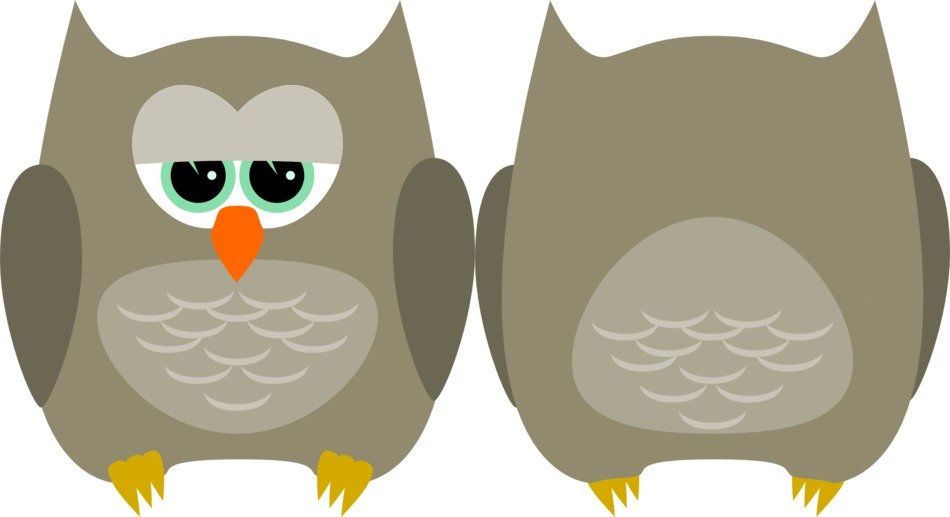 Graphics in the form of two gray owls