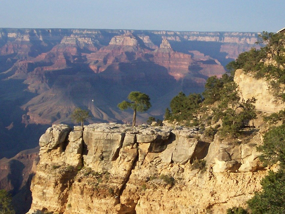 scenery of Grand Canyon, United States