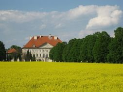 castle behind a yellow field and green trees