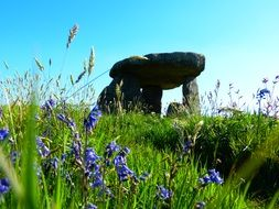 A giant stone table among the meadows in Cornwall