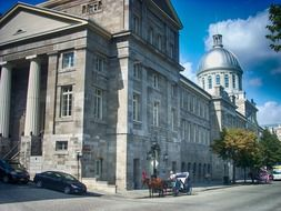 horse and buggy against the backdrop of a historic building in Montreal