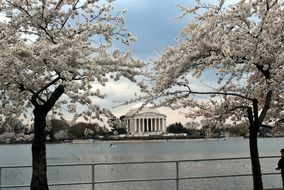 winter jefferson memorial