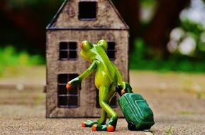 A toy a green frog with a suitcase comes into the house